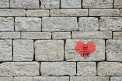 Brick Heart Unwanted Life Logo | Mental Health and Wellness Blog