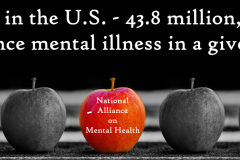 1 in 5  Americans Mental Health Unwanted Life | Mental Health and Wellness
