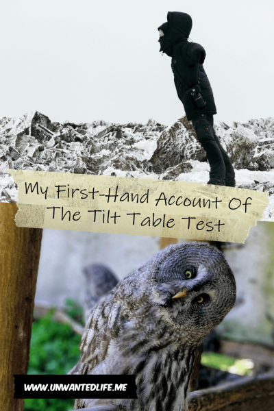 A image split in two. The top half is of a person leaning into a strong wind and the bottom half is of an owl with its head cocked to one side. Both images are a representation of the tilt table test and are split by the article title - My First-Hand Account Of The Tilt Table Test