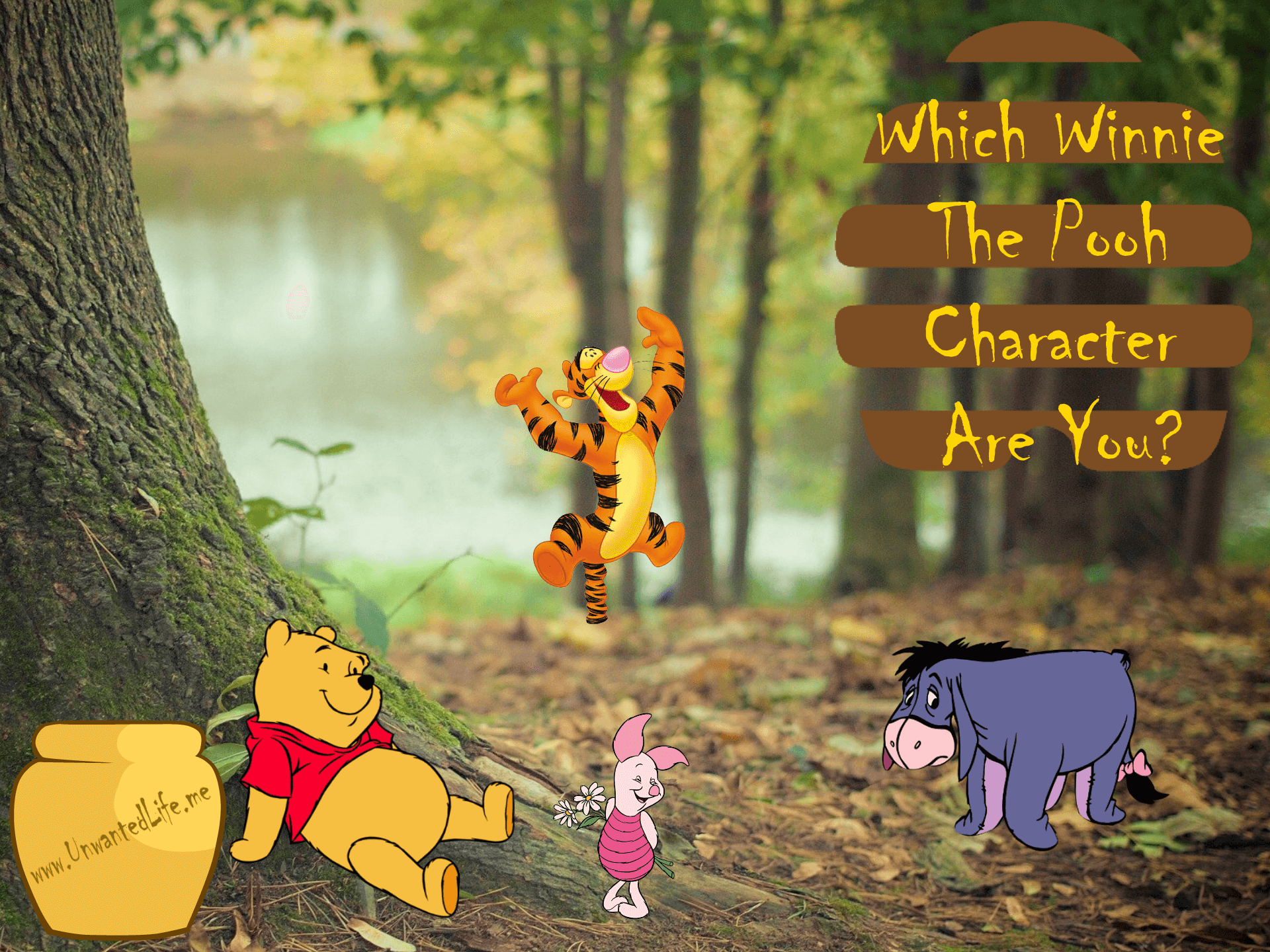 A picture of four Winnie the Pooh characters sitting handing around in the woods to represent the topic of the article - Which Winnie The Pooh Character Are You?