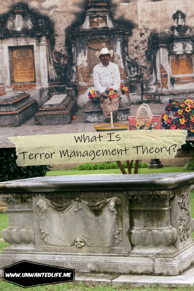 What Is Terror Management Theory | Psychology Theory | Death Anxiety | Unwanted Life