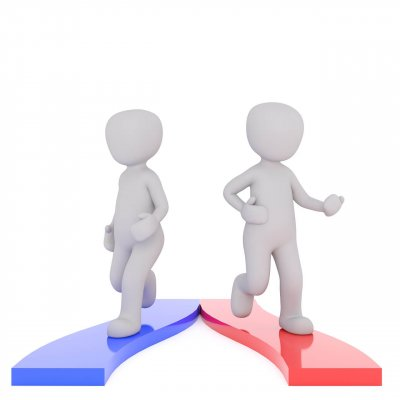 An image of two 3D stick people taking different paths to represent the topic of the story -  Runt Of The Litter