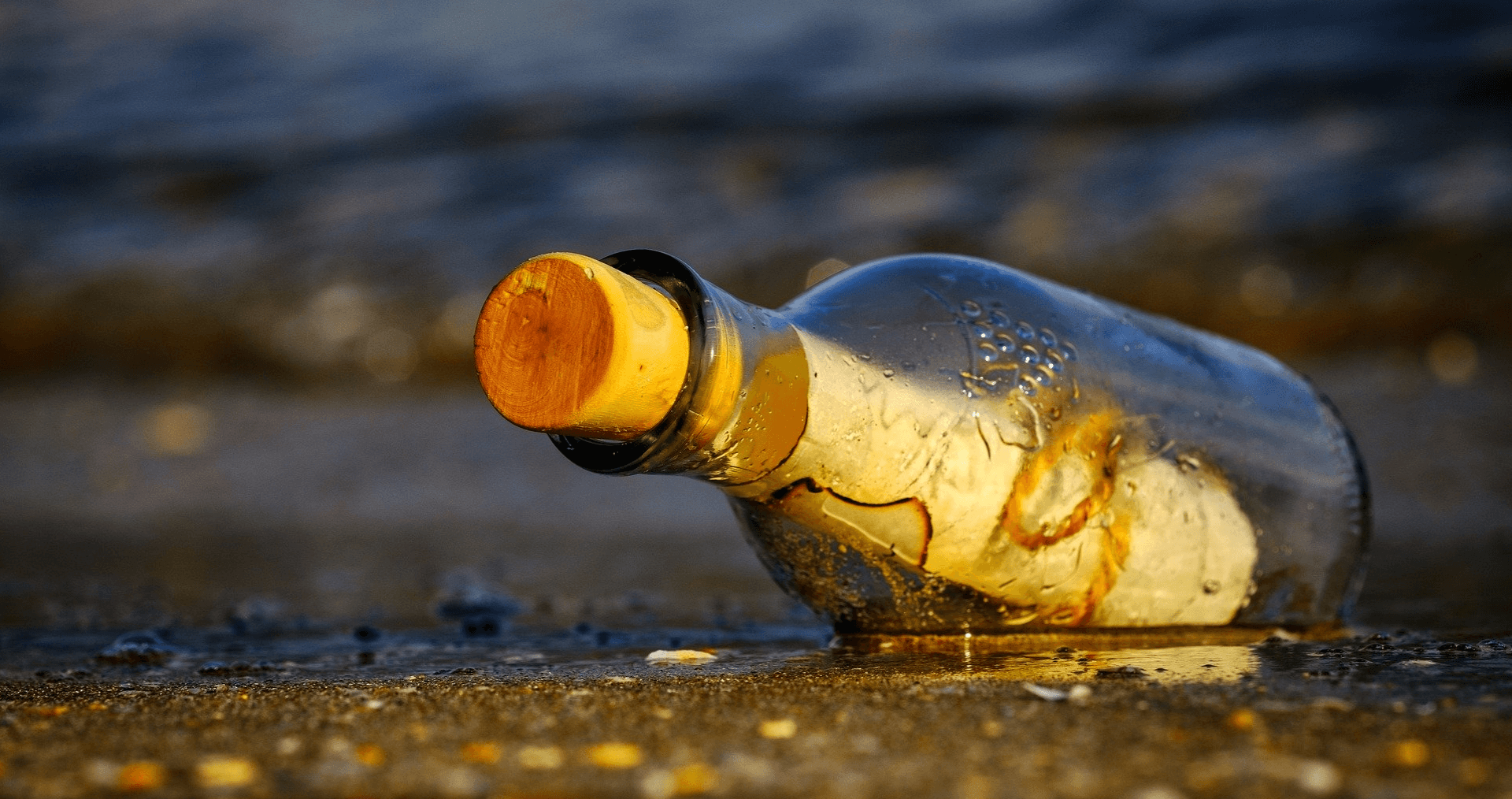 Banner for Unwanted Life's contact page which is a photo of a message in bottle at the beach