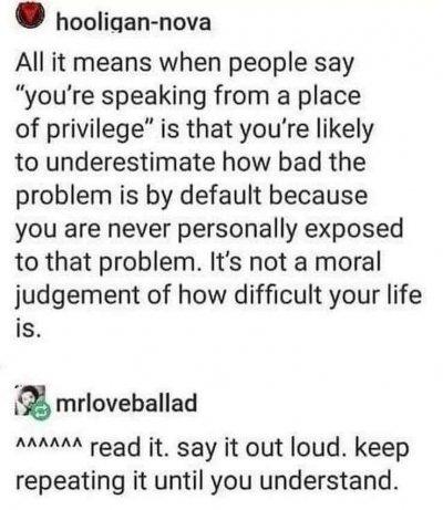 Screenshot of a meme about privilege