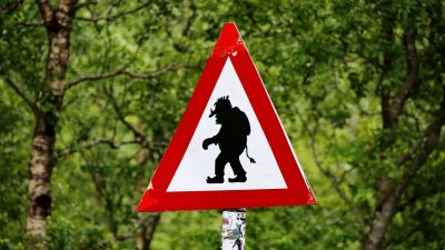A photo of a road sign depicting a troll to represent the topic of the article - The Impact Of Trolls: Sumo Cyco's Unwanted Life Story