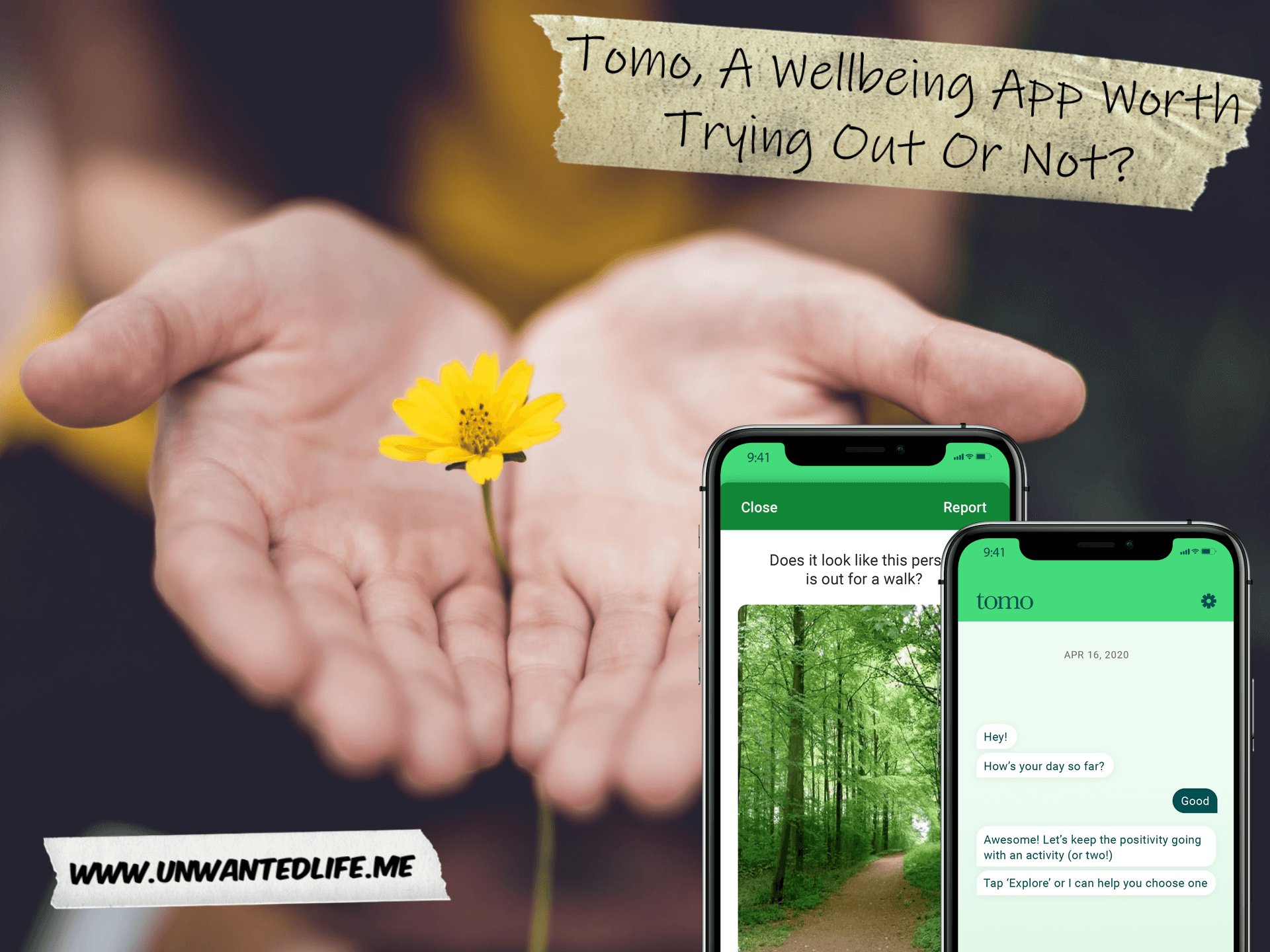 A photo of a woman's hand together, opened palms up, with a flower between their hands, to represent the topic of the article - Tomo, A Wellbeing App Worth Trying Out Or Not?